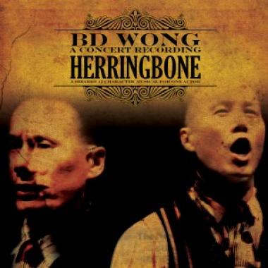 Herringbone – A Concert Recording